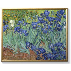 Винсент Ван Гог – Градина с Ириси