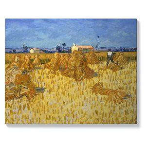 Винсент ван Гог – Царевична реколта