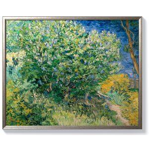 Винсент ван Гог – Люляков храст