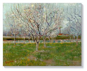 Ван Гог – Овощна градина (сливови дървета)