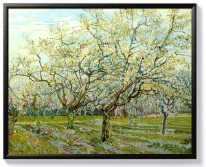 Ван Гог – Бялата овощна градина